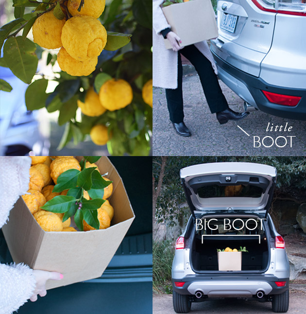 Open-tailgate-with-your-foot
